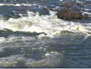 Chattahoochee River_9259