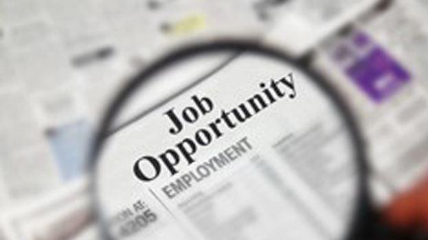 job_fair_135373