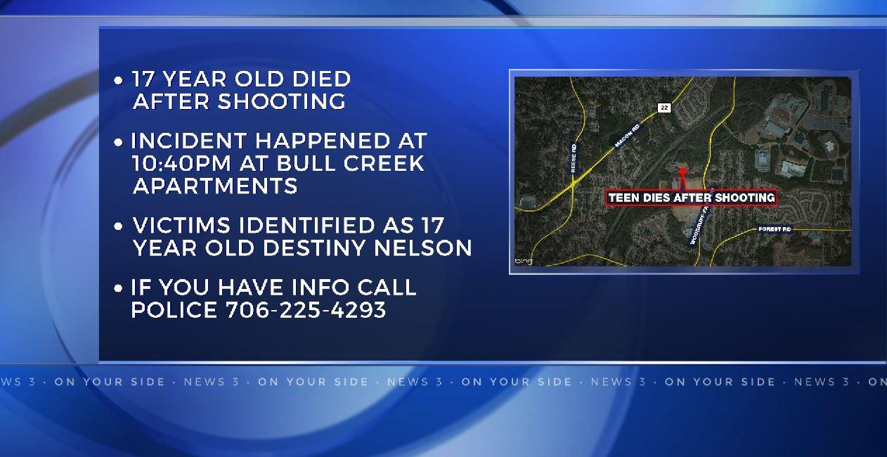 bull-creek_172419