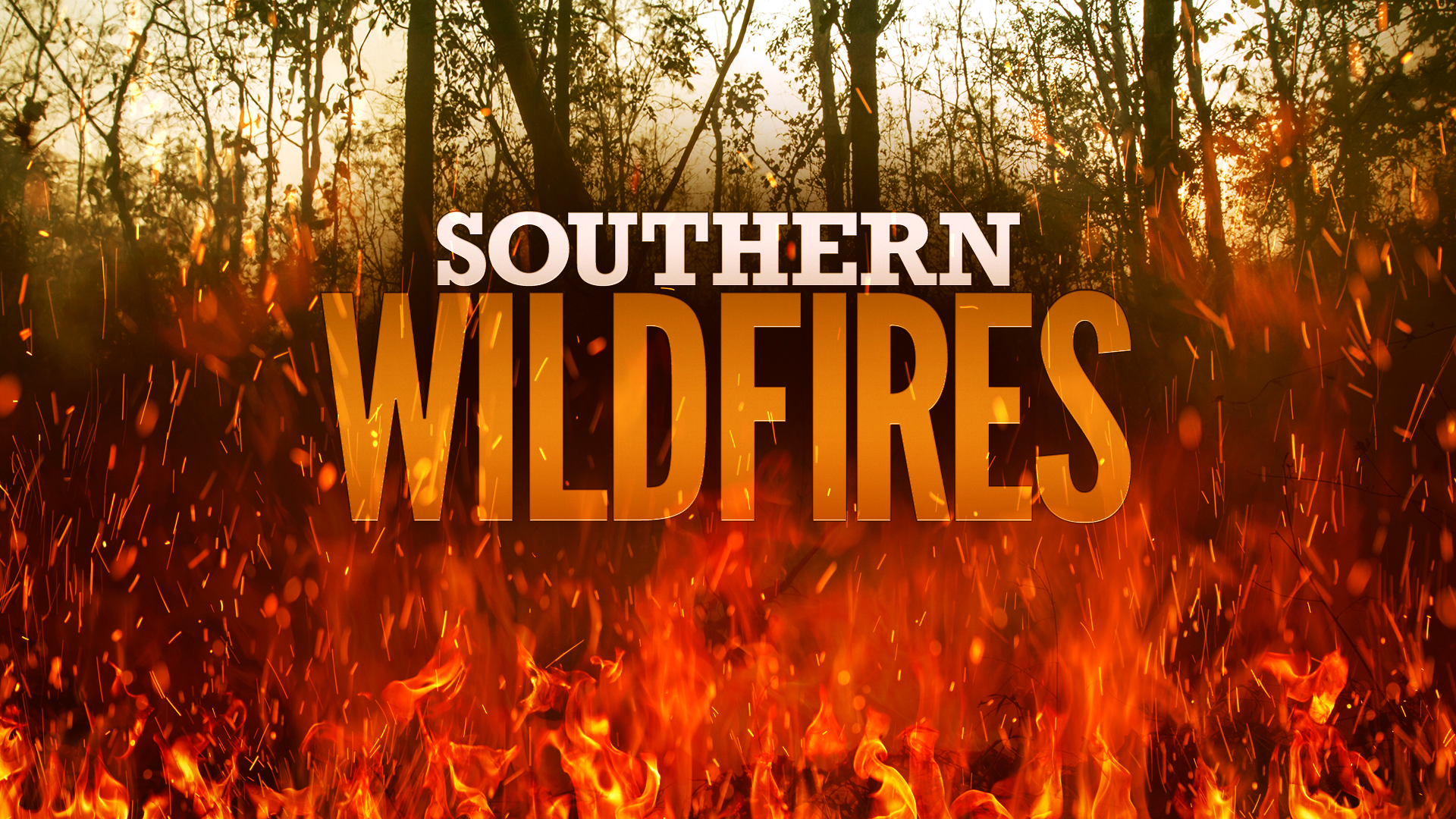 southern-wildfires_157493