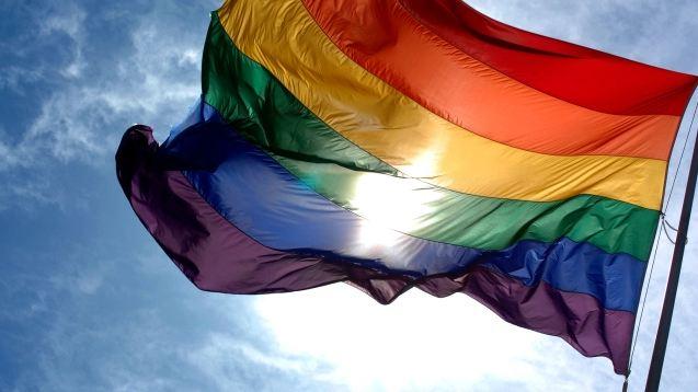 pride_flag_266983