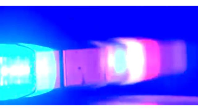 police-lights_29616087_ver1.0_640_360_1526053948636.jpg