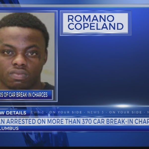 Man arrested on more than 300+ car break ins