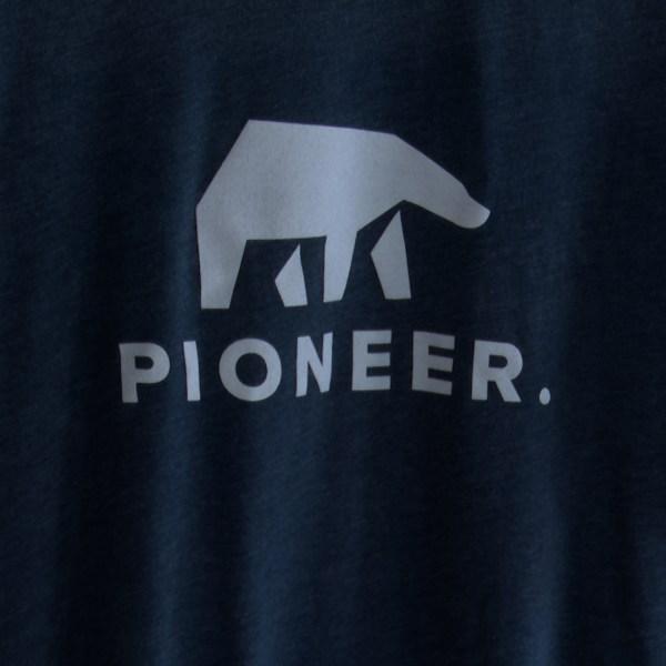 Pioneer Georgia