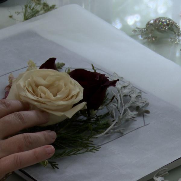 Modern Floral Preservation