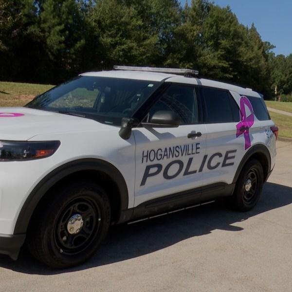 Hogansville Breast Cancer Car